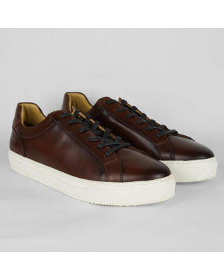 Tommy Hilfiger Premium Leather Cupsole Cognac Trainers